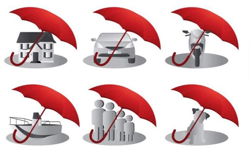 Bên mua bảo hiểm phải có tài sản đảm bảo hoặc bảo lãnh thanh toán